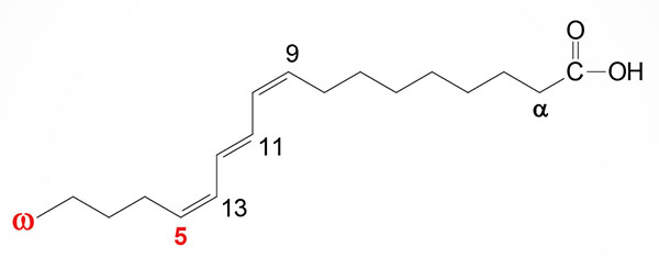 structure of punicic acid